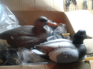 Mallard decoys New in box (12)