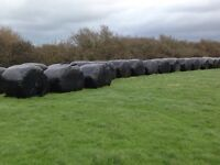 Big bale's for sale