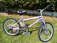 Bicycle Techeam 20'' pour fille 45$