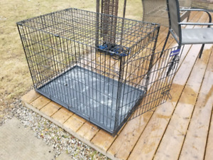 Large dog cage $40 firm