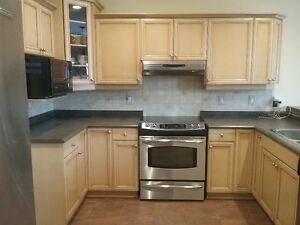 Cabinets and counter top for sale