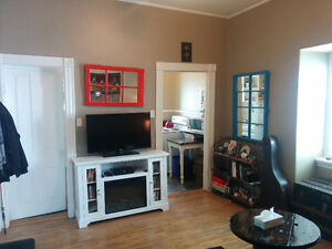 Fantastic One Bedroom Downtown!