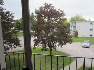 Main Floor, 2 Bedroom Apartment in Bridgenorth Peterborough Peterborough Area image 9