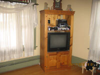 TV unit with the TV 3'X6""