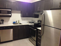 3 1/2 Montreal $1300/month lease transfer Aug 1st or Sept 1st