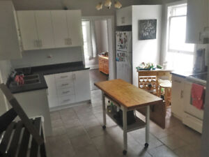 FULLY RENOVATED 2 BEDROOM FOR RENT VICTORIA AND STINSON