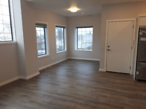 Gorgeous New Two Bedsroom Apartment