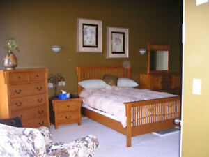 Fully Furnished Executive Apartment Downtown avail April