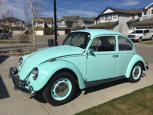 1967 Beetle for sale
