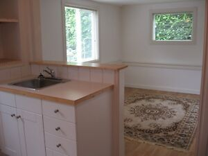 Bright 1 bedroom Suite for Rent in Maplewood Area