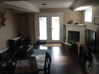 Beautiful Lower Level APT, Great Space for Single Occupancy