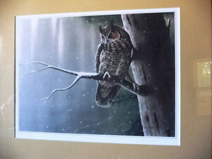 """Hand Signed Wildlife Lithograph by L. E. Robinson """"The Watcher"""" Stratford Kitchener Area image 8"""