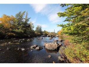 Land For Sale Holyrood
