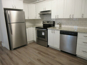 Brand new junior 1 BR by lake, granite, stainless, large deck