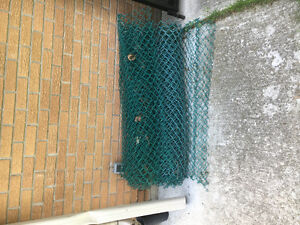 Green chain link with Galvanized top rail and gate