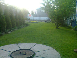 LAWN MOWING SERVICES STARTING AT LOW $65.00!!!! Cambridge Kitchener Area image 1