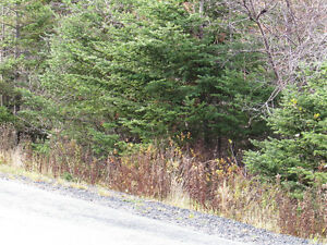 82-94 RIDGE ROAD, CHAPEL'S COVE..2 ACRES