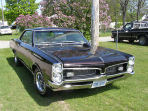 wanted 1967 GTO