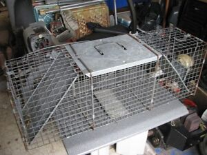 cage pour animaux nuisible
