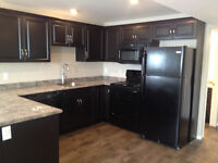 New 2 Bed Basement Suite Avail Sept 1st – Gas & Water Included