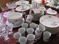 Large Vintage Set of German Porcelain Dishes