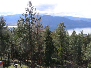 Okanagan Lake view property -  Penticton lot