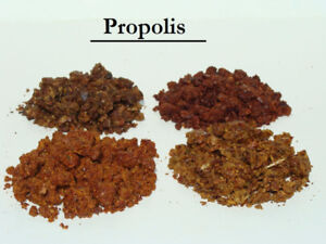 Propolis   (fabriquée par les abeilles)