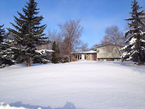 TURTLEFORD HOME FOR SALE (large 100x200 ft lot) 307 Poplar St.