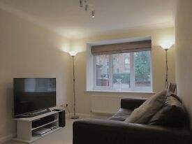 Fully Furnished Beautiful 1 Bedroom Apartment In Surbiton