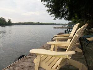 Rich's Buck Lake: Loons, Deer, A/C !