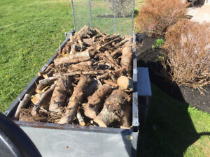 Firewood (Best for Camping!!)  902 626 9996 - James