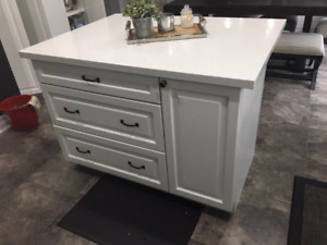 Quartz Counter Top Island - with pull out recycle and trash bins