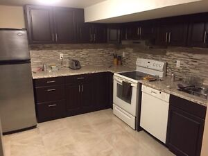 1 bedroom fully furnished/renovated basement apartment