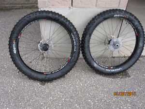 fat bike wheelset with tires