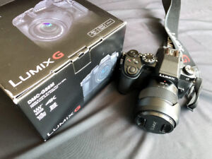 PANASONIC LUMIX G85 4K Mirrorless Camera,