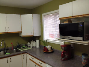 Used Kitchen Cabinets - MUST GO !!!
