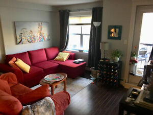 Professional or Mature Student  to share Furnished 2b apt May 1