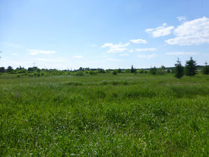 Vacant Land with approx 3 Acres Lavigne, Ont