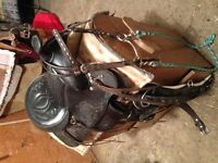 "Kids 12"" saddle with extras for sale"