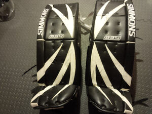 Almost everything you need to try goaltending...