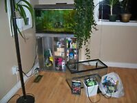 fish tank, stand