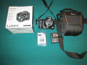 Lumix DMC-FZ70 avec case Lowepro