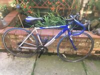 Mans alloy road bike 56cm frame ideal for the summer