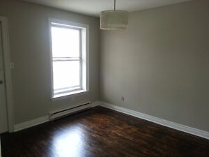 SPACIOUS 3 Bedroom, 2 stories in High Park North / Junction