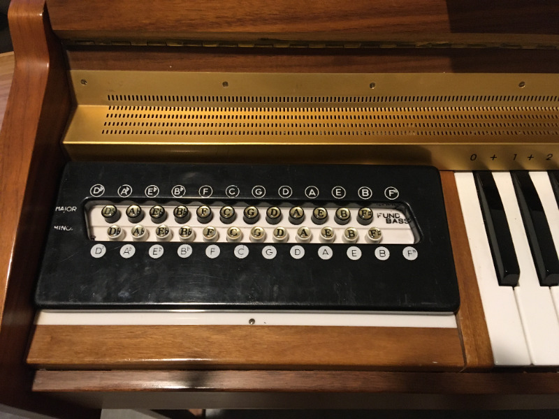 Electric organ -  a great christmas gift