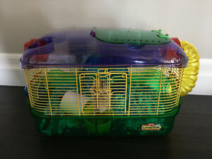 Hampster puls cage/bedding and food