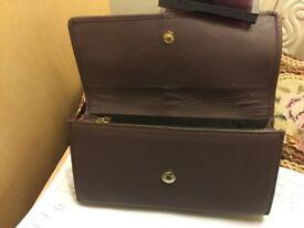 Paul Costello purse