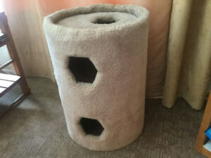 Cat condo and litter box