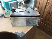 Small glass tank with heat mat