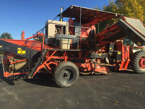 Thomas  B88 Potato Harvester REDUCED